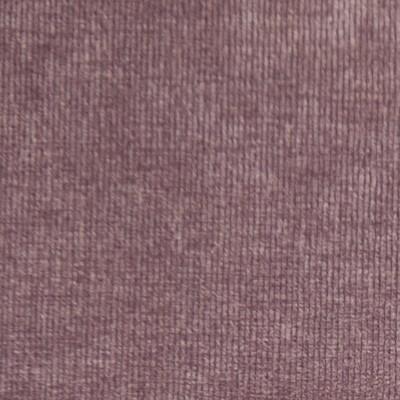 Danza - Lavender